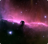 The 'Horsehead' Nebula